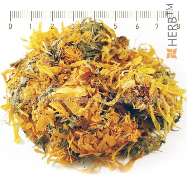 calendula orange, calendula officinalis l. marigold tea, marigold application, marigold price