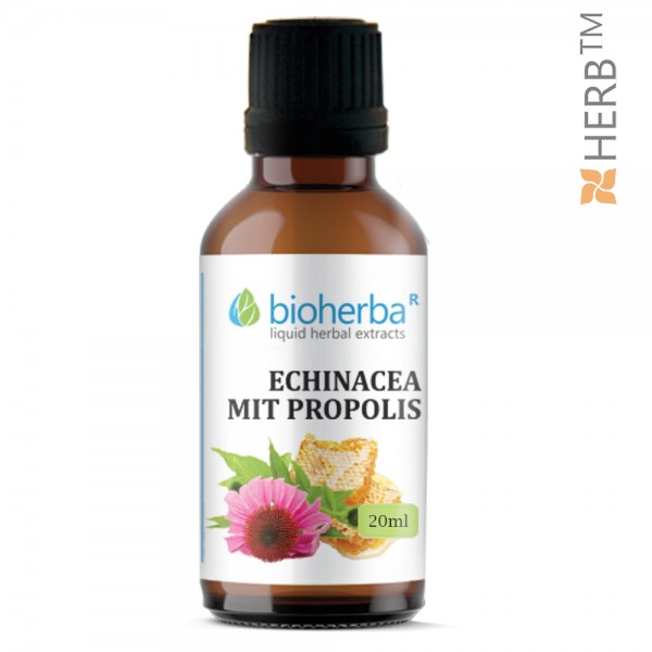 tincture, echinacea, tincture echinacea, echinacea tincture, 20ml, cold, flu, colds, natural product, price, prices