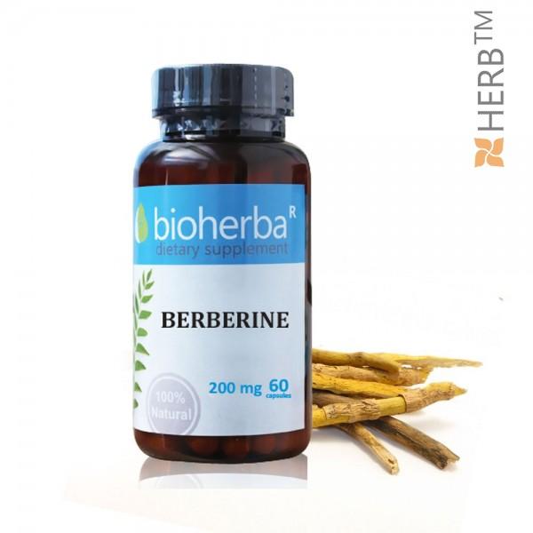 берберин, berberine, биохерба, капсули