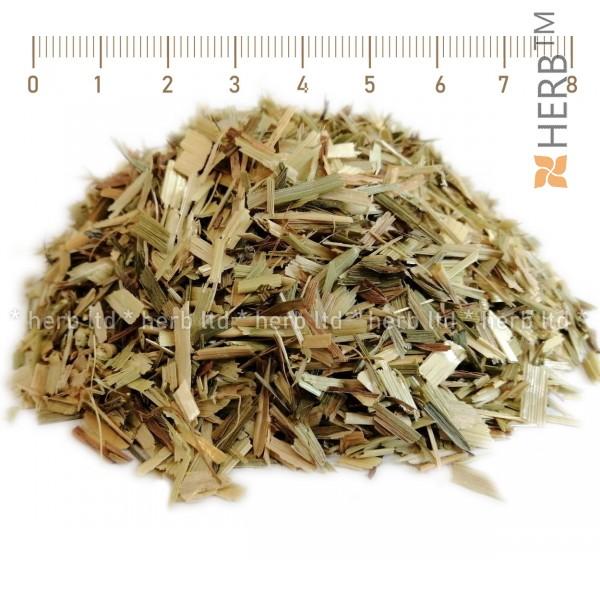чай зелен овес, пикочно-полови заболявания, артритни болки, инфекции