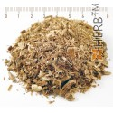 LOVAGE ROOT CUT Levisticum officinale, root