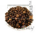 BLACK PEPPER WHOLE SEEDS Piper nigrum, seed