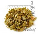 Hops Tea, Humulus lupulus, flower