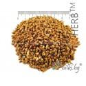 Millet, Proso Millet Seeds, Panicum miliaceum, Kidney tea