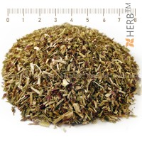 oregano red, oregano stalk, oregano spice, oregano herb, oregano price