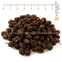 Blackthorn, thorn herb, thorn fruit benefits, thorn price, thorn treatment