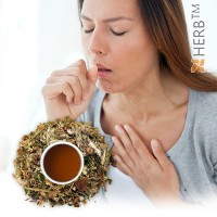 breast tea, bronchial tea, cough herbs, Bronchial tea for Winter, Herbal Tea Blend,