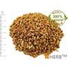 MILLET, PROSO MILLET (seed) 2x500 g