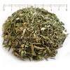 andrographis herb, stalk, natural antibiotic, flu, andrographis tea price