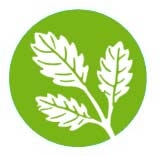 Herbs is the craft and experience of a team working with care and love.