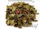 (semințe de extract de caise) de vitamina B-17, Bioherba, capsule de 100, 50 mg