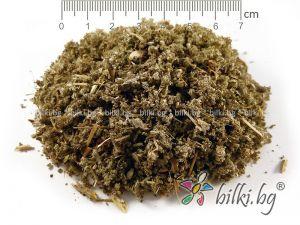 geranium oil, geranium