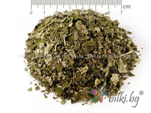 trestan 7 herbs shampoo,500 ml