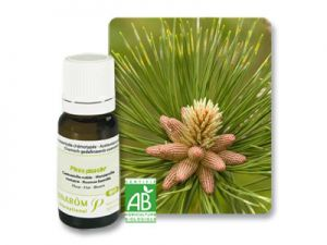 pranarom, essential oils, pine needles