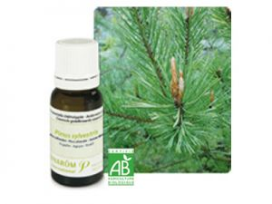 pranarom, essential oils, scottish white pine