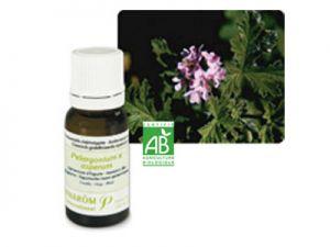 pranarom, essential oils, egyptian geranium
