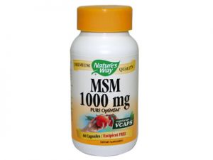 msm,1000 mg, nature's way