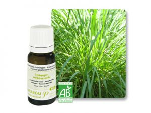 pramarom, essential oils, citronella